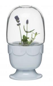 03 Sagaform green Gewaechshaus lavendel_blau
