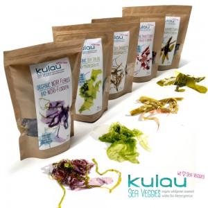 Alle Algen in Reihe mit KULAU Logo